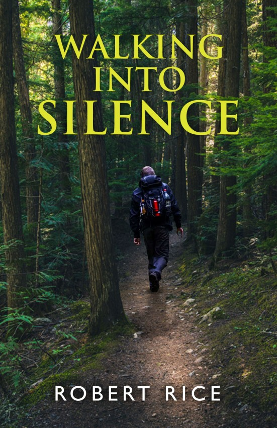 Walking into silence book cover
